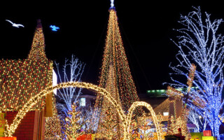 Electrical Services for the Holiday Season
