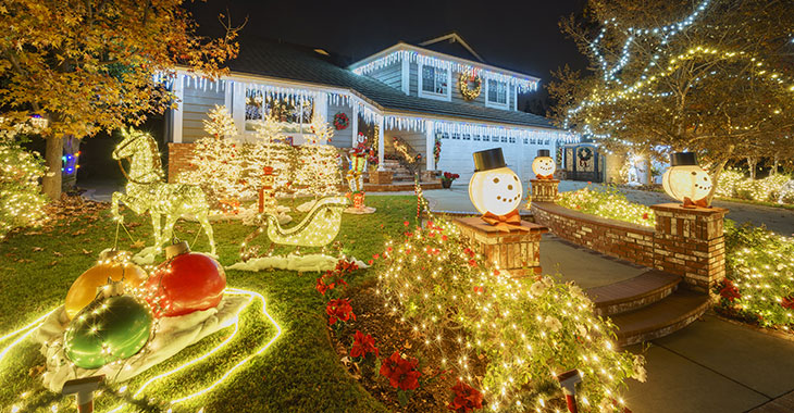 Professional Holiday Light Services